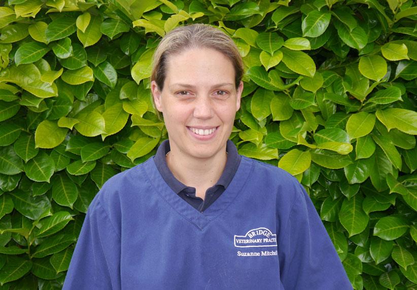 Suzanne Mitchell Veterinary Surgeon