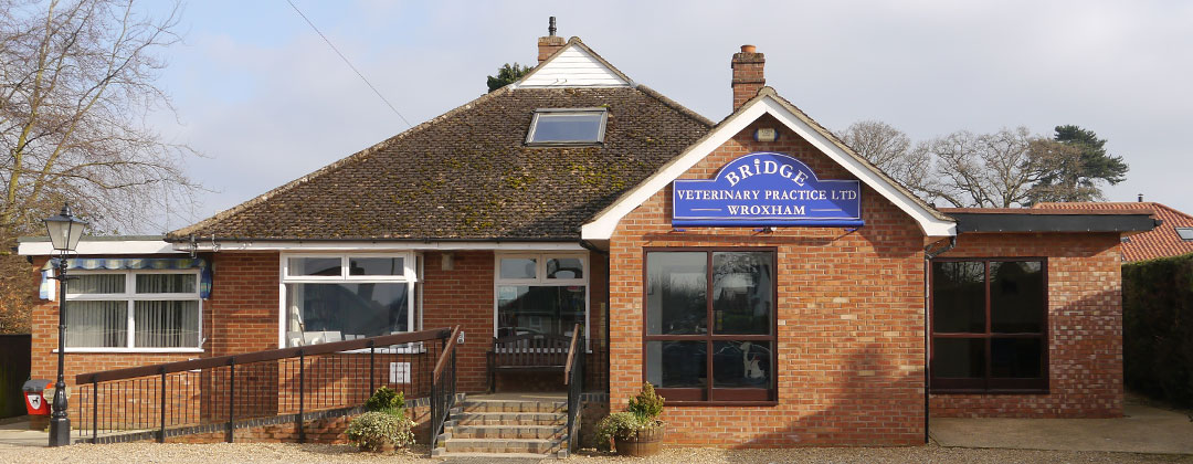 Bridge Veterinary Practice